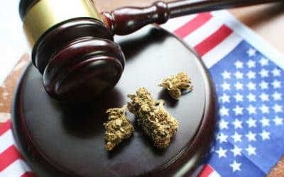 Federal Cannabis News Highlights