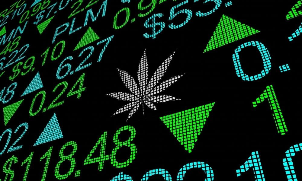 Cannabis Industry News and Current Events